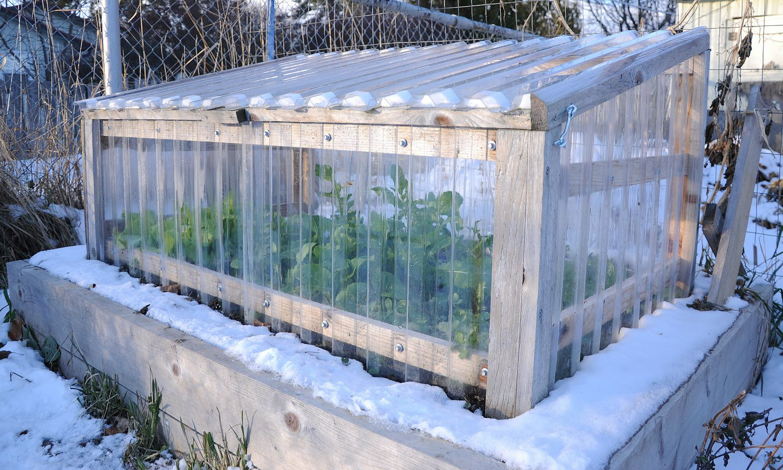Cedar Cold Frames provides quality cold frame kits to extend your ...