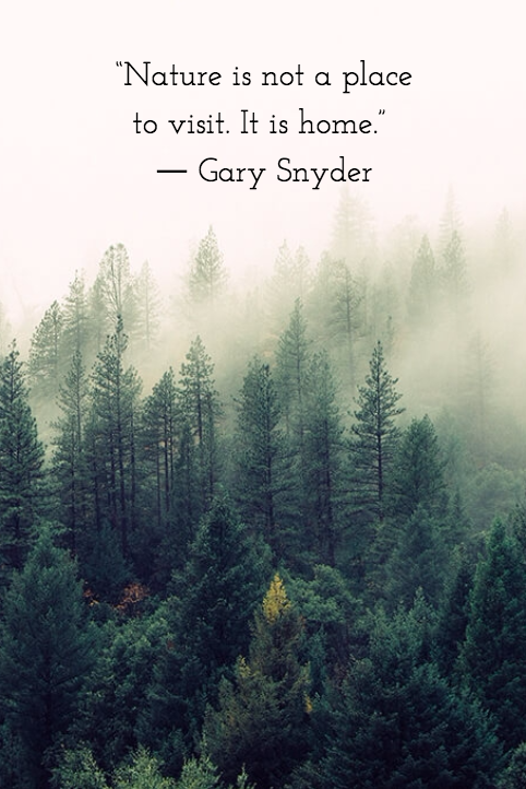 Nature Is Not A Place To Visit It Is Home Gary Snyder