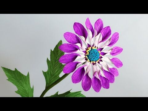 1 Abc Tv How To Make African Daisies Paper Flower From Crepe