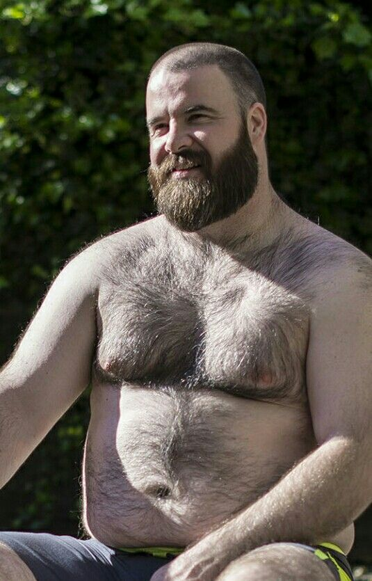 bearded bear facial gay