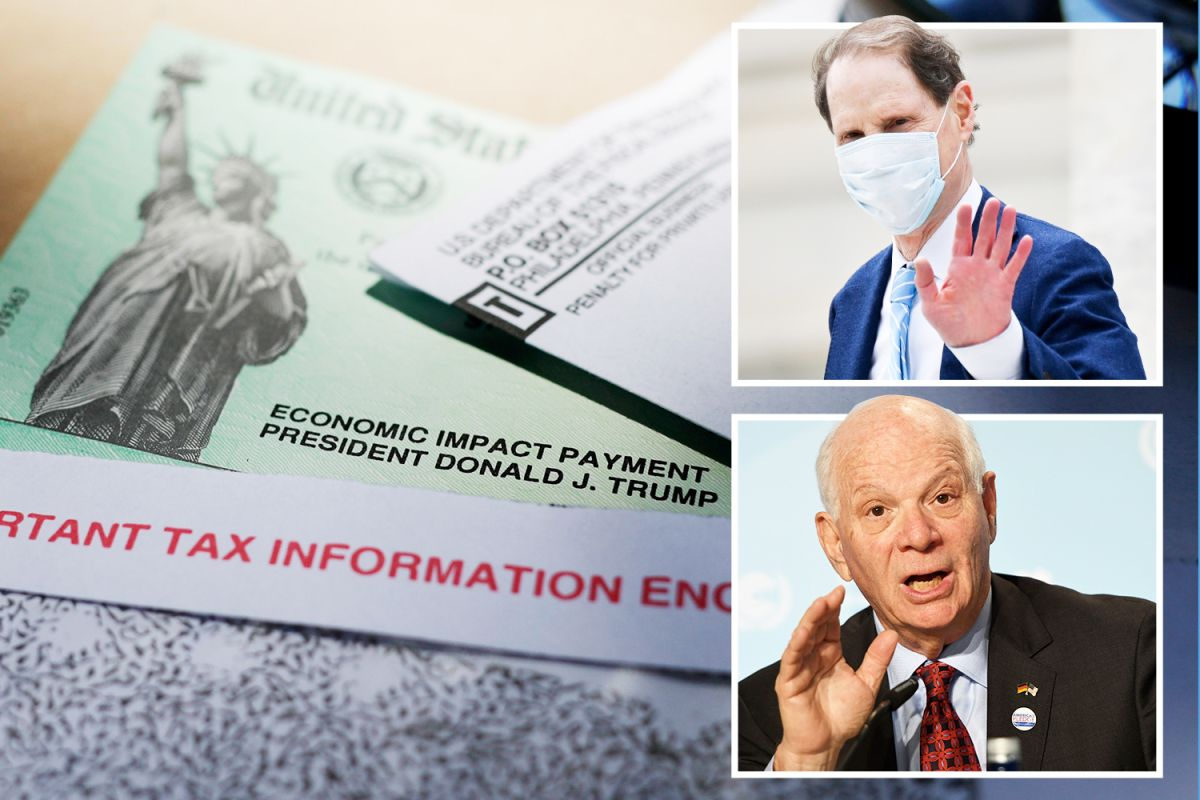 Second round of stimulus checks 'could be in doubt' as