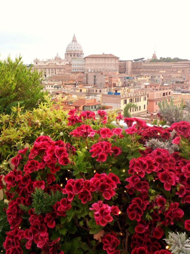 TERRAZZA LES ETOILES A ROMA | Terrazzo, Palazzi, Eventi