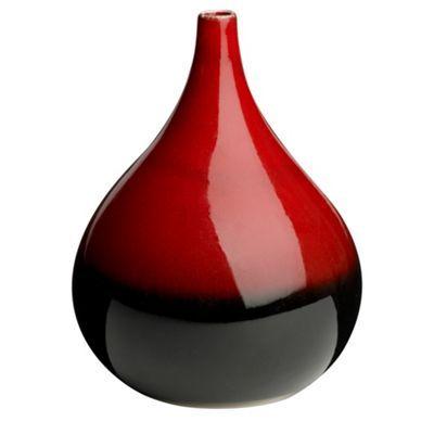 Rjrhn Rocha Red Reactive Vase At Debenhams Fabulous Finds