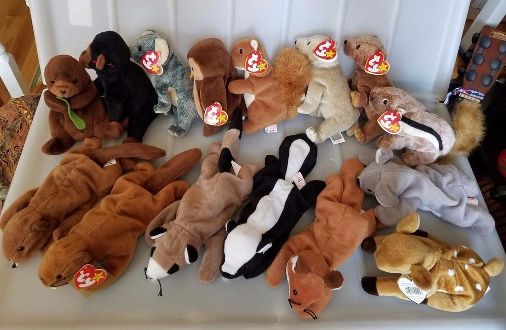 ccbdd252639 15 pc Lot TY Beanie Babies wild Forest Woodlands animals Retired  Ty