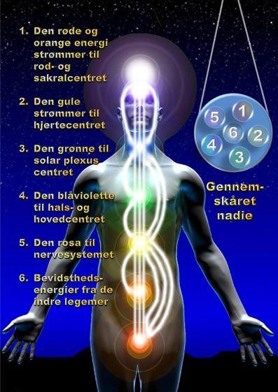 MENNESKE KEND DIG SELV.  CHAKRAER OG CENTRE.  Æterlegemets primære funktioner. Fysisk bevidsthed udtrykker sig i hjernen, nervesystemet og cellemassen.  Psykisk bevidsthed er tanker og følelser, der kommer til udtryk i deres egen indre verden.  Tankerne kommer til udtryk i hjernen, men de skabes ikke af hjernen.  Derfor må der være en forbindelse mellem det sted, hvor tankerne opstår og selve hjernen.  Denne forbindelse er æterlegemet.  Samtidig danner æterlegemet en beskyttende barriere…
