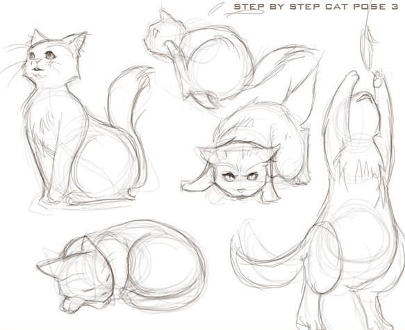 How To Draw A Cat Animal Drawings Cartoon Drawings Drawings