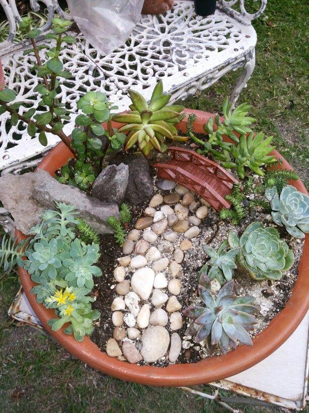 Mini jard n con suculentas mini garden decoraciones de for Planta perenne en maceta de invierno