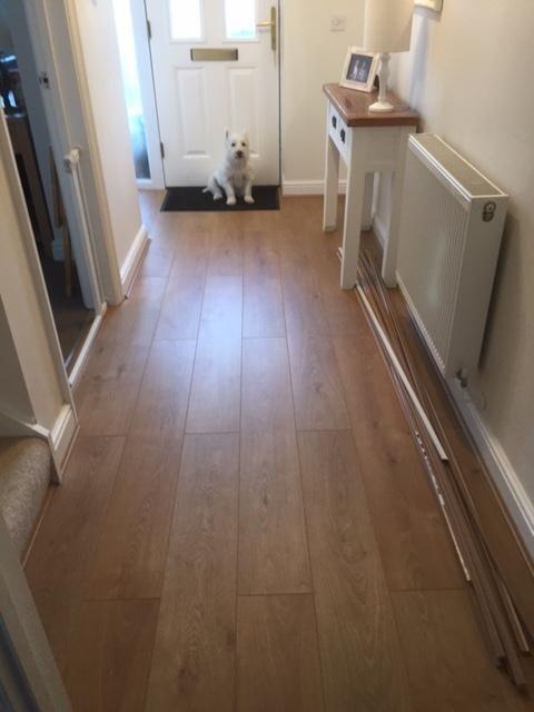 Exelent Milano Oak Laminate Flooring Model - Best Home Decorating ...