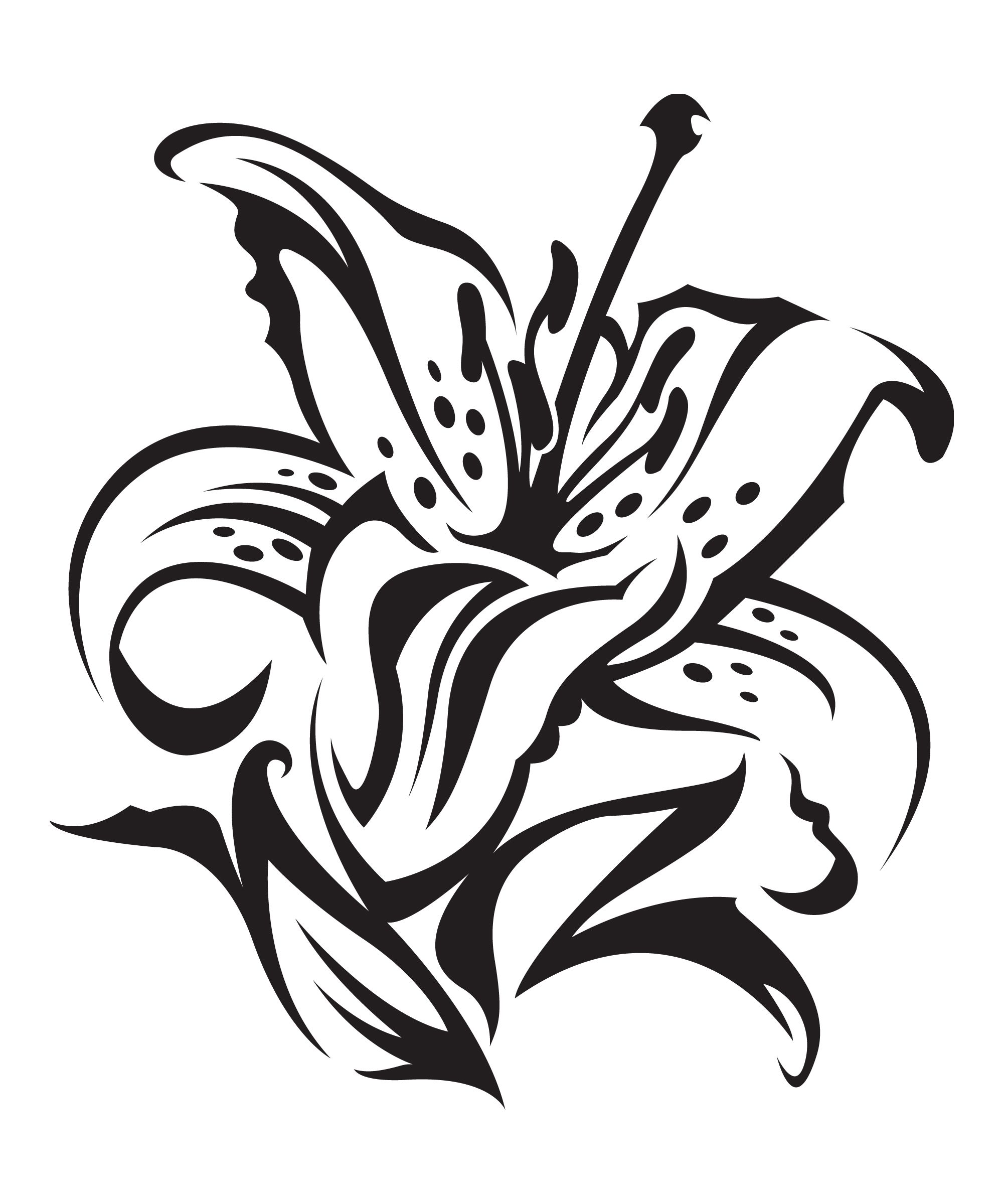 Lily tattoos meaning symbolism awesome artwork pinterest lily tattoos meaning symbolism izmirmasajfo