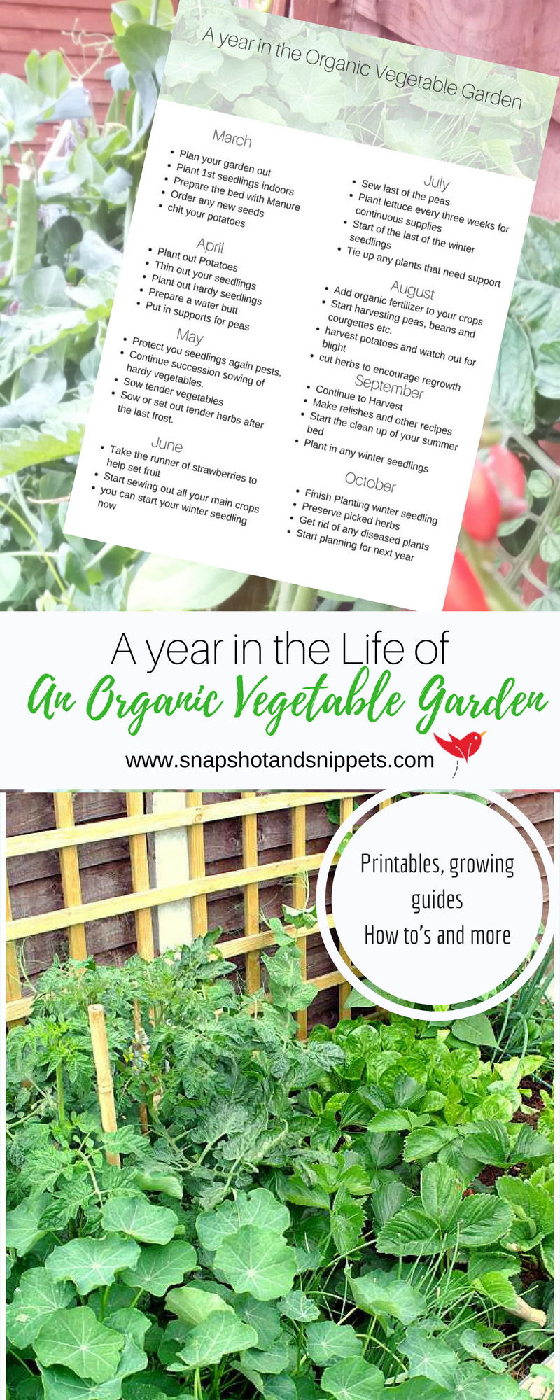 A Year In The Life Of An Organic Garden Pin