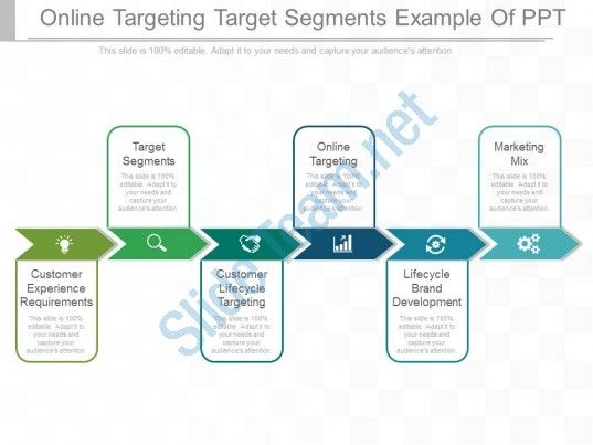 online targeting target segments example of ppt Slide01 Business - career timeline template