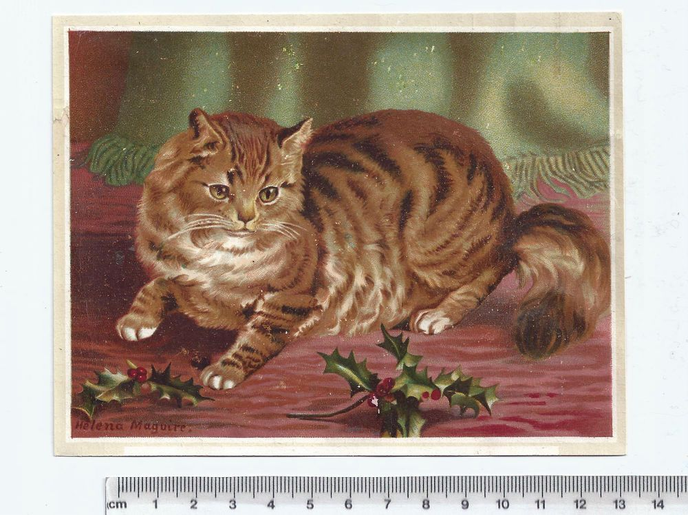 Late Victorian / early 1900's Greetings card. CAT. Helena Maguire