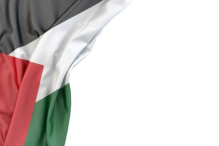 بورتريه علم فلسطين خلفية بيضاء Hd احلى صور وخلفيات اعلام الدول مجانا 2020 مكتبة الفوتوشوب