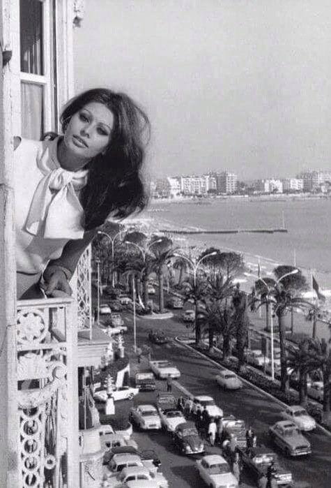 صوفيا لورين في إسكندرية