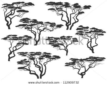 Acacia Tree Stock Photos Acacia Tree Stock Photography Acacia Tree Stock Images Shutterstock Com African Tree Acacia Tree Acacia