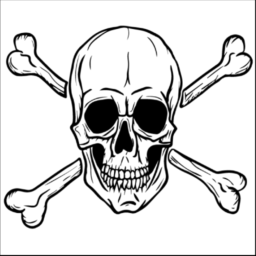 Skull and Cross Bones (With images) | Pirate skull tattoos ...