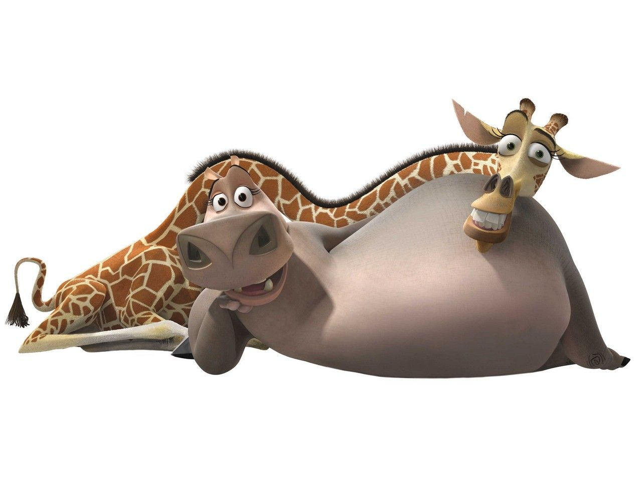 Hippopotamus Madagascar