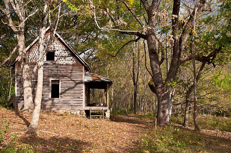 Granny Hendersons Historic Cabin Near Jim Bluff Buffalo