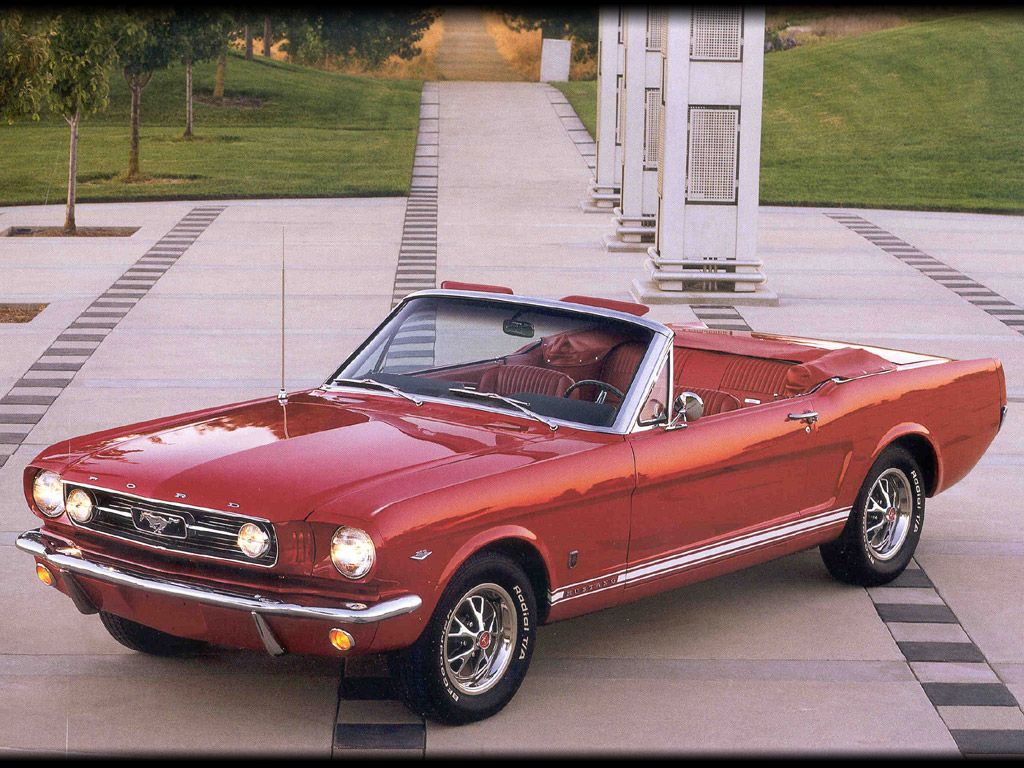 1964 to 1966 mustangs saferbrowser yahoo image search results