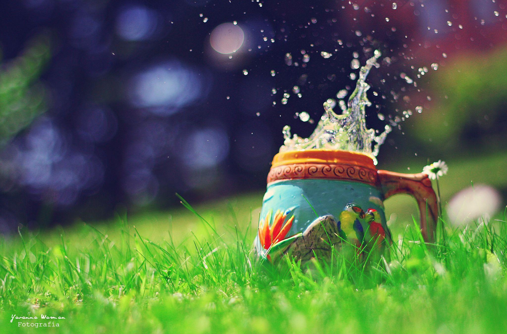 https://flic.kr/p/cmDQe9 | Summer splash! | © 2012 Yavanna Warman  {Web}   Twitter . Formspring . Tumblr . Blog . 500px . Pinterest