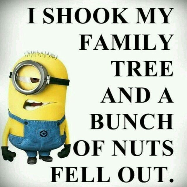 Awesome So Screw It On A Bolt And Bam Parts Minions Funny Minion Jokes Funny Minion Quotes
