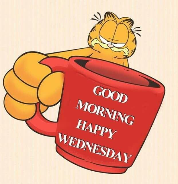 Good Morning Garfield Good Morning Wednesday Good Morning Happy Happy Wednesday Quotes