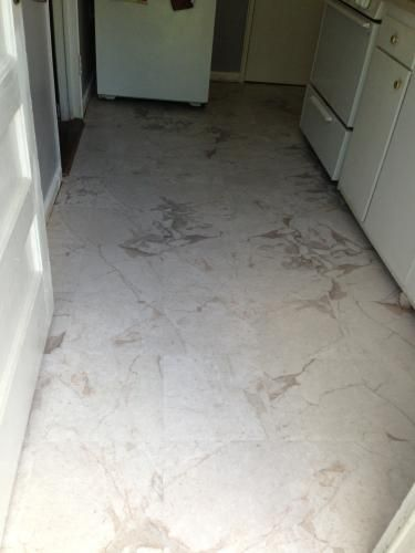 12 Marble Floor Designs For Styling Every Home: Traffic Master Premium 12 In. X 12 In. Carrara Marble