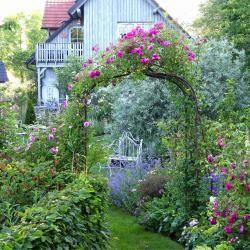 Rosenbogen Modern rosenbogen richtig aufstellen