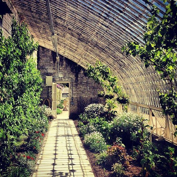 Dublin National Botanic Gardens Greenhouses Dublin Ireland