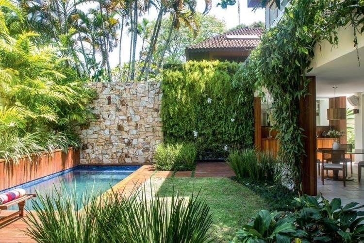 La cl ture jardin moderne accent qui garantit bonne for Mur vegetal exterieur quelles plantes
