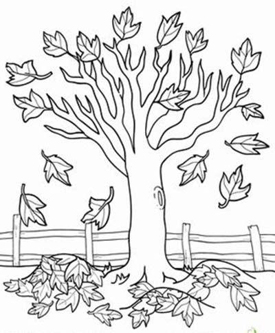 Раскраска осень — листья, деревья, урожай, фрукты, овощи ...