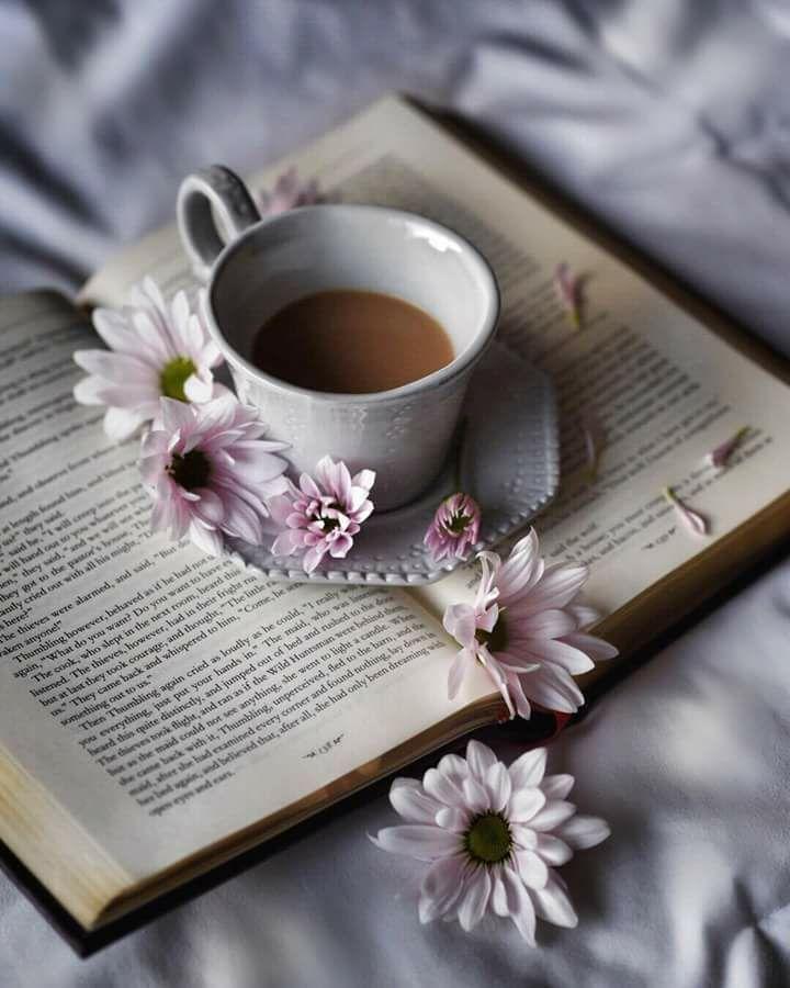 Картинки доброе утро с книгой