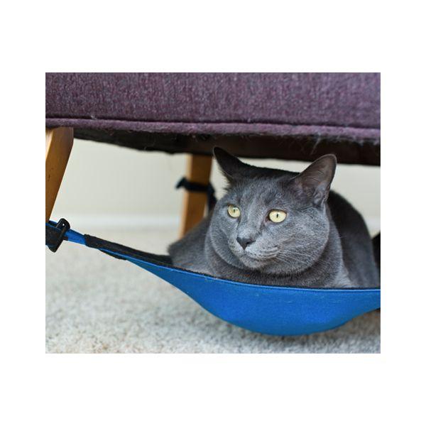 Gato azul ruso en hamaca