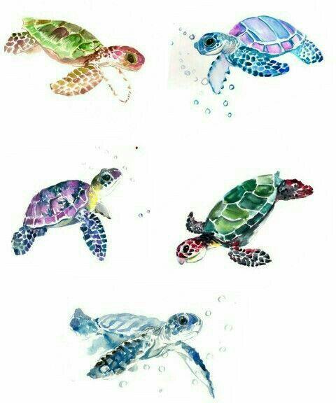 Pin By Barbara Blizzard On Sea Turtles Sea Turtle Tattoo Turtle