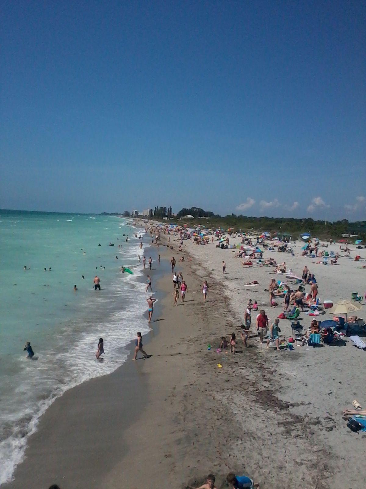 Beach florida venice Venice Beach,