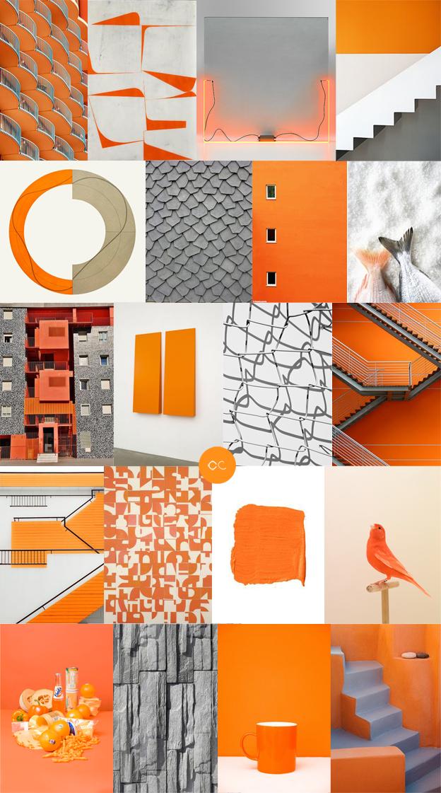 Contemporary Colour Trend Color Colour Colorpalettes Colorscheme Color Palette Design Design Seeds Contemporary