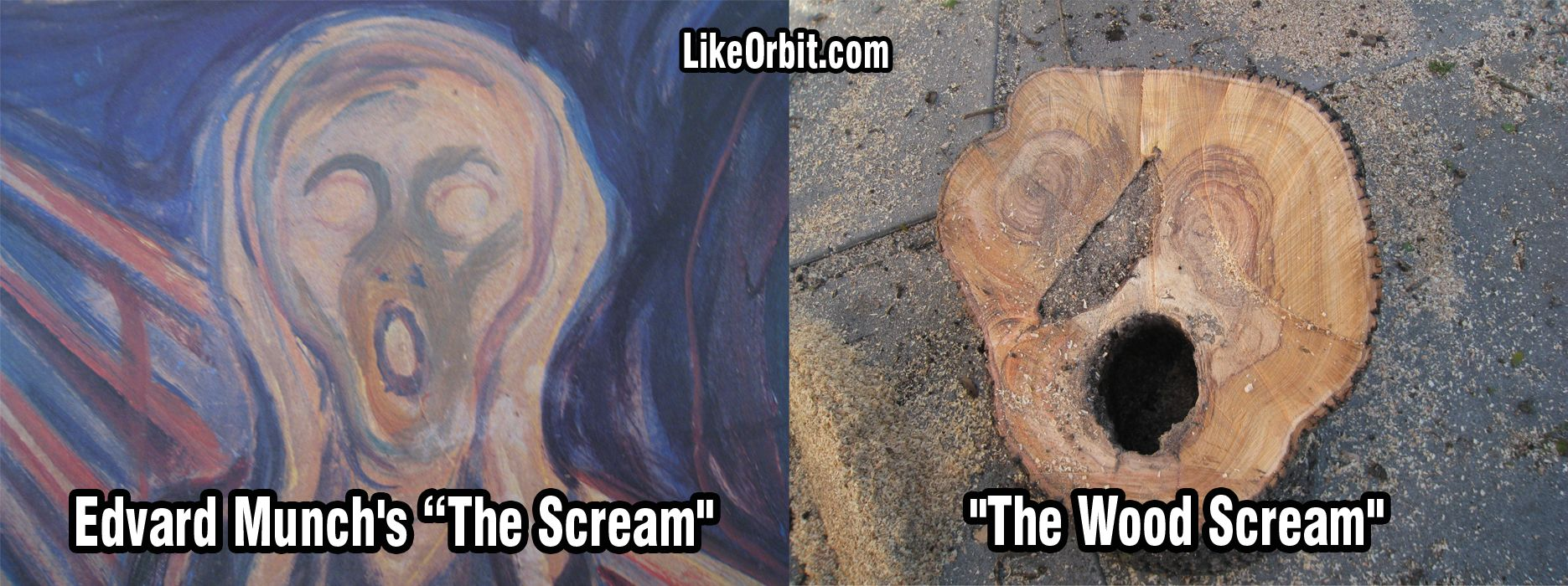 "It's  ""The Scream"" by Edvard Munch. Only it's a Wood Scream. Do you see it? Look at the Painting and then at the cut Tree Wood... you can almost hear a Scream..."