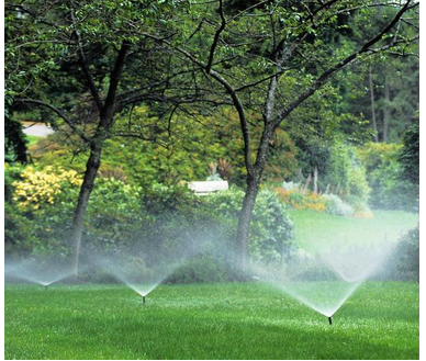 Do S And Don Ts Before Your Sell Your Home Sprinkler Irrigation Lawn Problems