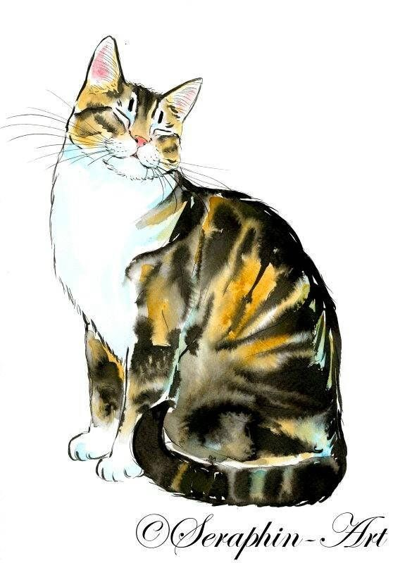 cyperse kat origineel aquarel schilderij | maneki | cats, watercolor