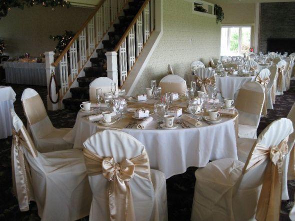 Blush Or Champagne Chair Sash White Chair Covers Chair Covers