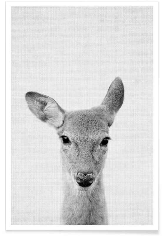 info for 6190f cd5cd Print 90 as Premium Poster by Lila x Lola | JUNIQE | Animals ...