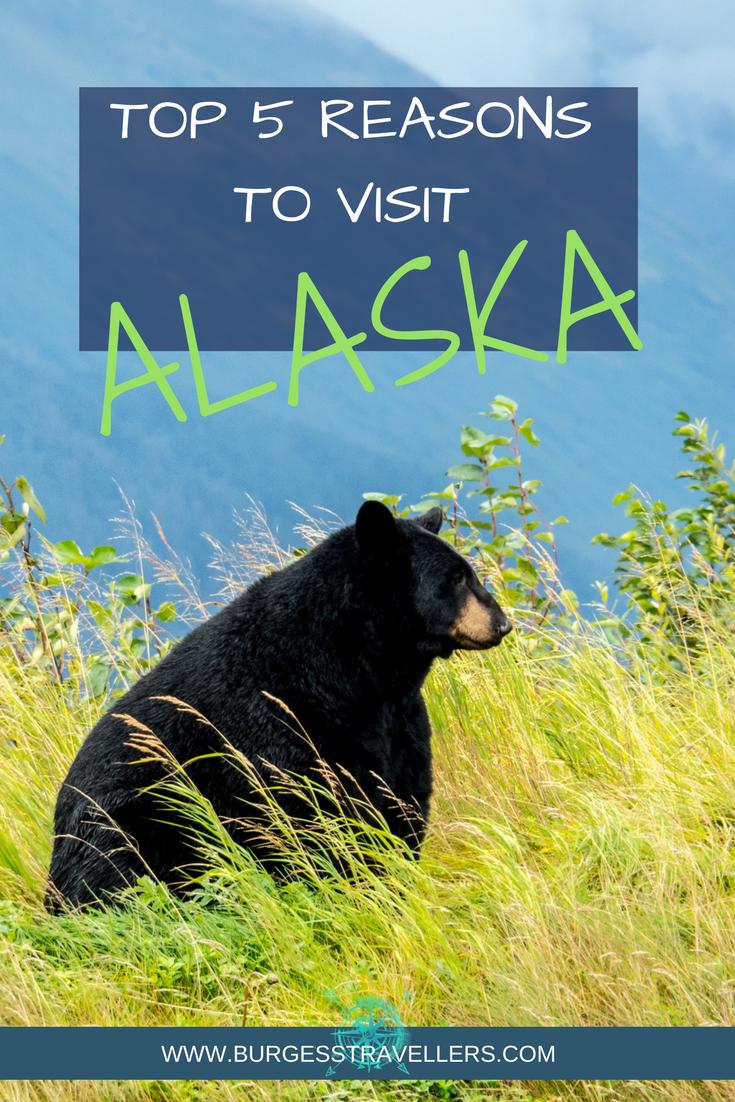Top 5 Reasons to Visit Alaska
