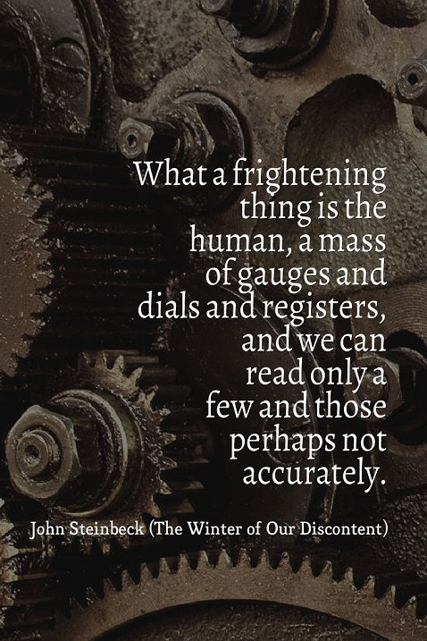 The Winter of Our Discontent   John Steinbeck ~ETS #steinbeck