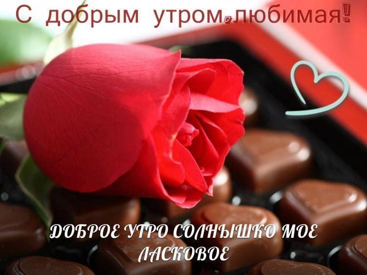 Romantichnye Kartinki Animacii Dobroe Utro Lyubimaya 30 Foto