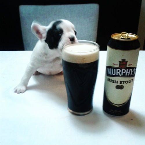 happy beers