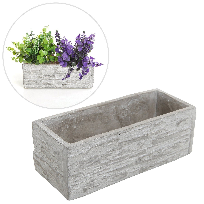 Amazon.com: Gray Cement Rectangular Succulent Plant Flower