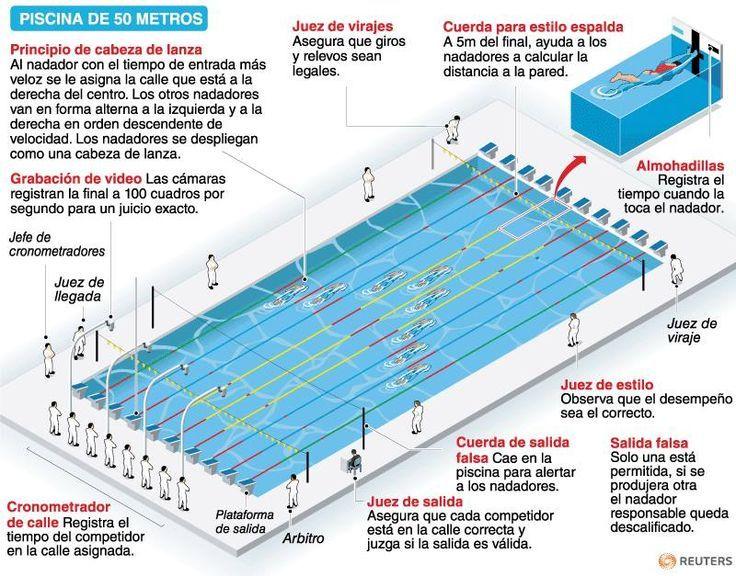 Estas son todas las partes de una piscina ol mpica for Cuanto cuesta hacer una pileta de material 2016