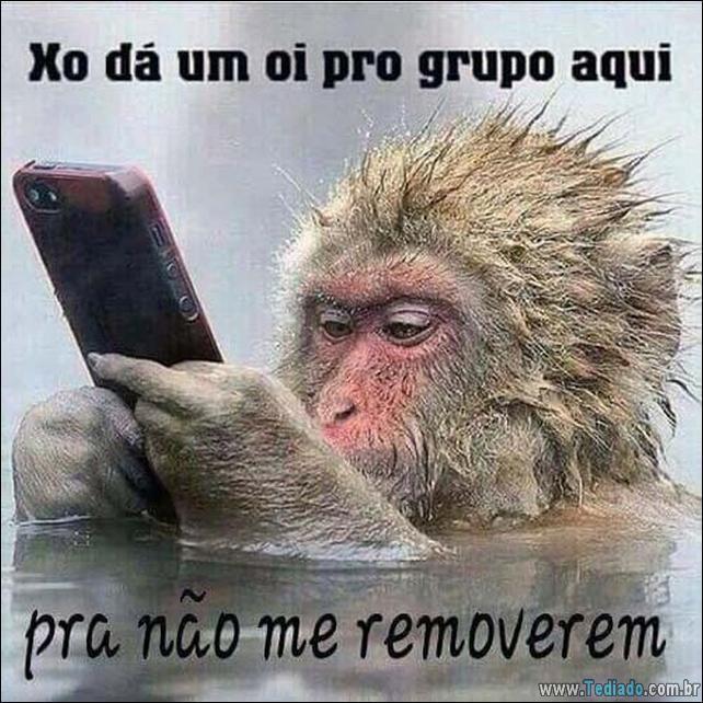 50 Imagens Para Whatsapp Mensagens Engracadas Para Amigos