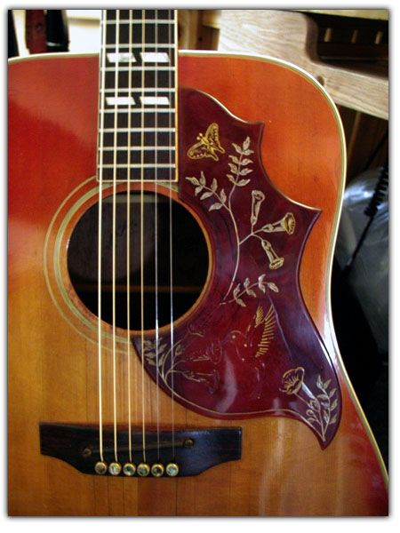 The Real Star of StrumSchool - The Gibson Hummingbird  StrumSchool - Free Video Guitar Lessons  http://www.strumschool.com/guitar-gear-reviews/the-real-star-of-strumschool-the-gibson-hummingbird