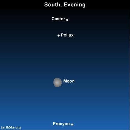 2016-march-17-moon-castor-pollux-procyon